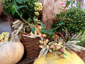 apple harvest decorations
