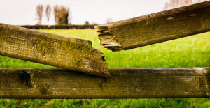 old, broken fence