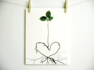 paper heart tree