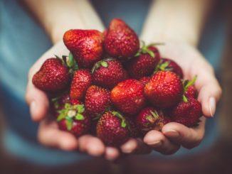 red, ripe strawberries