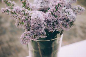 generosity blooms