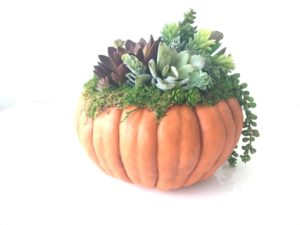 pumpkin wedding centerpieces for fall