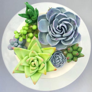 An Earth Day themed cake decorating contest.
