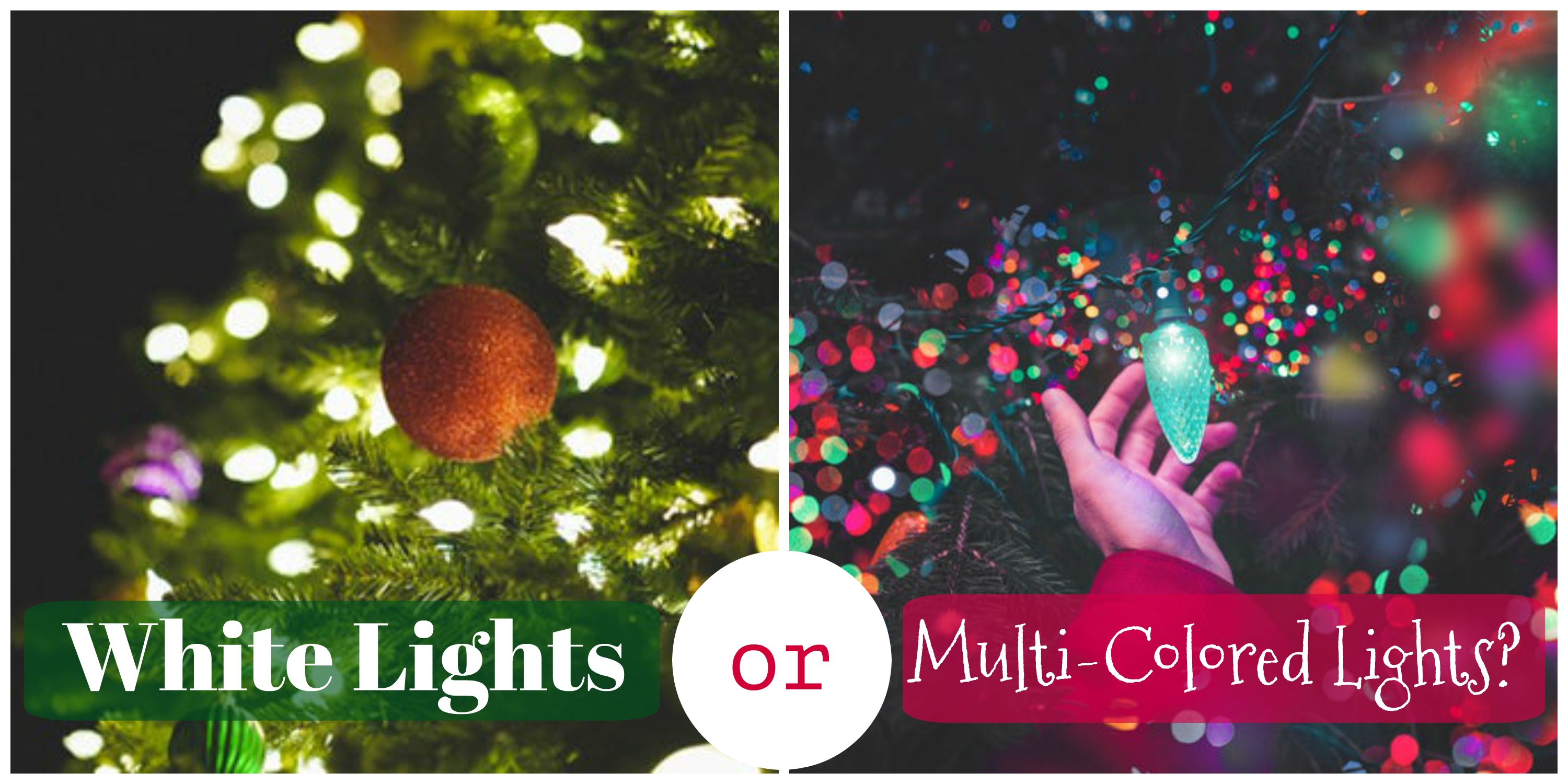 Sparking Controversy White Christmas Lights Or Multi Colored Elfster Blog